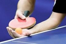 داور شیروانی مسابقات تنیس روی میز بزرگسالان را قضاوت می کند