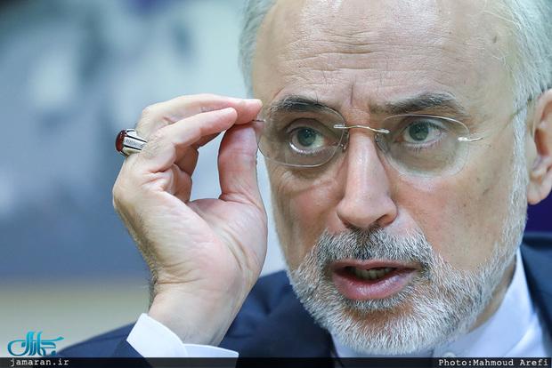 نیروگاههای 2 و 3 بوشهر چه زمانی آماده می شوند؟/ توضیحات علی اکبر صالحی