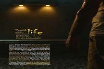 فیلم زندگی لزج به دو جشنواره در آمریکا و انگلیس راه یافت