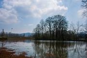 مدیرکل حفاظت محیطزیست: برای نجات تالابهای قم همصدا باشیم