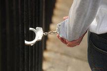 دستگیری 4 نفر از عوامل اصلی ناامنی تهران در خلخال