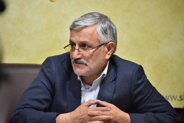 واکنش میرزایی نیکو به رویکرد حذفی هیأت های اجرایی انتخابات شورای شهر