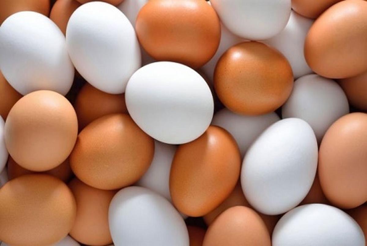 نحوه نگهداری تخم مرغ در یخچال