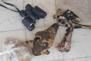 آثار شکار بره وحشی از منزل متخلف حرفه ای در کرمان کشف شد