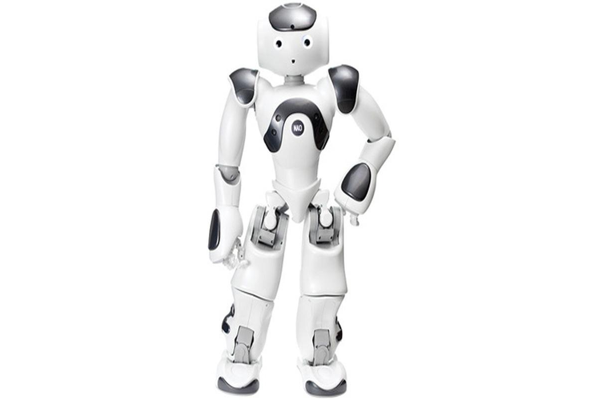 ربات ها سالمندان را از راه دور ویزیت می کنند