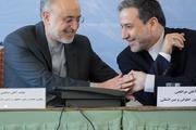 تحریم دکتر صالحی تنها عصبانیت و استیصال آمریکا از به بن بست رسیدن سیاست فشار حداکثری را اثبات میکند