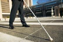 11 درصد معلولان زیرپوشش بهزیستی نابینا و کم بینا هستند