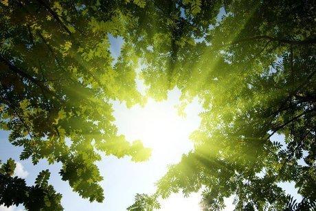 چگونه نور خورشید ویروس کرونا را خنثی می کند؟