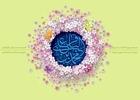 میلاد امام باقر / میثم مطیعی