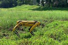 رباتی که فاصله گذاری اجتماعی را کنترل می کند!