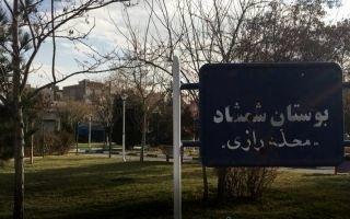 کلاهبرداری سازمان یافته در بوستان شمشاد محله رازی  218 اصله درخت و 5 هزار متر چمن در خطر نابودی