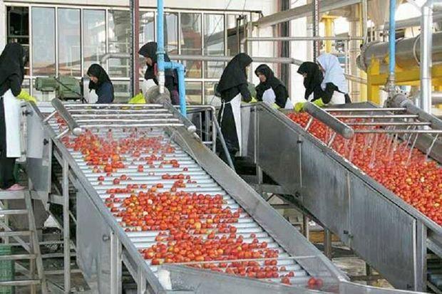 تنها ۵۰ درصد ظرفیت صنایع تبدیلی خراسان شمالی فعال است