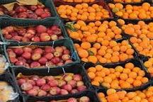 ذخیره سازی 6 هزار تن میوه شب عید در استان تهران