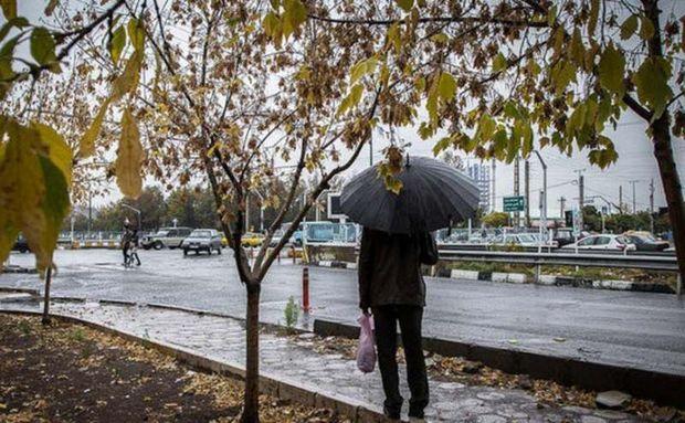 سامانه جدید بارشی وارد بوشهر میشود