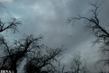 پاییز امسال پر باران است