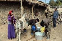 1.5 میلیارد دلار برای اشتغال پایدار روستایی اختصاص یافت