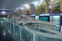 28 اردیبهشت بازدید از موزهها رایگان است