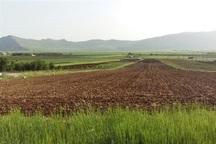 370 هزار هکتار زمین به اراضی کشاورزان افزوده شد