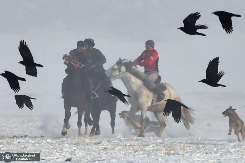 منتخب تصاویر امروز جهان- 24 آذر