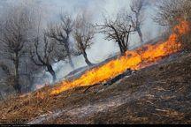 مراتع چوار قربانی آتش زدن پس چر مزرعه شدند
