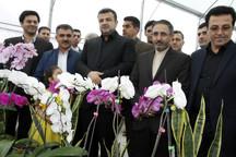 پایانه صادرات گل و گیاه عباس آباد باید هرچه زودتر فعال شود