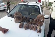 شکارچی متخلف در تربت حیدریه دستگیر شد