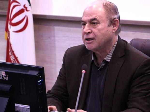 رییس شورا: شهرداری همدان قطع درختان اردوگاه فجر را بررسی کند