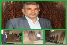 احداث باغات مثمر جدید در استان لرستان