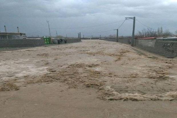 باران شدید به روستای بیاضه خور خسارت زد