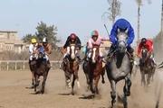 رقابت ۵۲ راس اسب در روز دوم هفته ششم کورس پاییزه گنبد