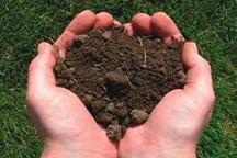 انجام آزمایش خاک در کمتر از 10 درصد زمین های کشاورزی مازندران