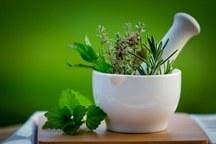 گیاهان دارویی جهرم با مجوزعلوم پزشکی صادر می شود