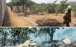 نگرانی درباره آتشسوزی فضای سبز افزایش یافته است