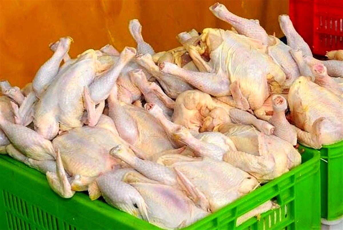 جزییات تخلف در مراکز توزیع گوشت مرغ + جدول قیمت محصولات پروتئینی در بازار