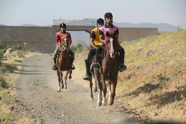 مسابقه اسبسواری جام آذربایجان در مرند برگزار میشود
