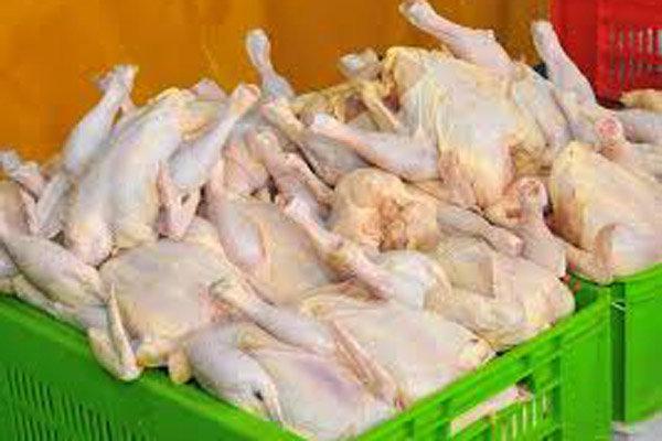 پنج تن گوشت مرغ غیر بهداشتی کشف و معدوم شد