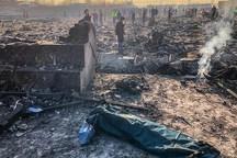 100 نفر از قربانیان سقوط هواپیما شناسایی شدند/ تحویل30 پیکر به خانواده هایشان