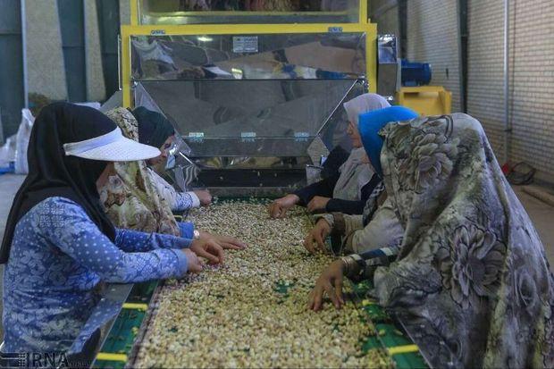 ۱۳۲۰ طرح اشتغال روستایی در قزوین تسهیلات دریافت کردند