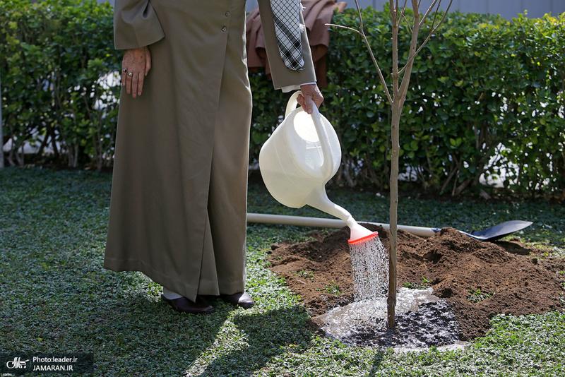غرس کردن دو اصله نهال میوه توسط رهبر معظم انقلاب اسلامی