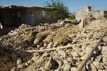 335 میلیارد ریال خسارت تلفات دام زلزله زدگان پرداخت شد
