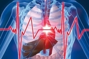 توصیه های کلیدی برای سلامت قلب و استخوانها
